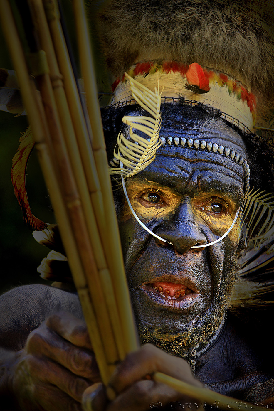 Chief of West Papua, Indonesia