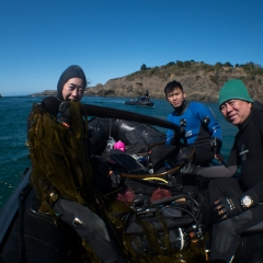 Northern California Camp/Dive/Eco Adventure: Fall 2019