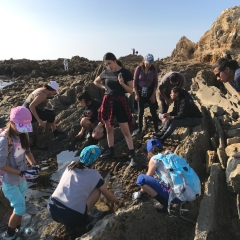 Trip 11/10/19 Tidepool Exploration