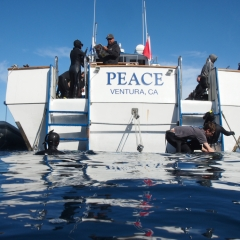 Trip 2/22/20 Anacapa Is. - Peace