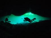 OSDT-Yucatán Peninsula Mexico diving and Eco trip (June 19 ~ 24, 2013)