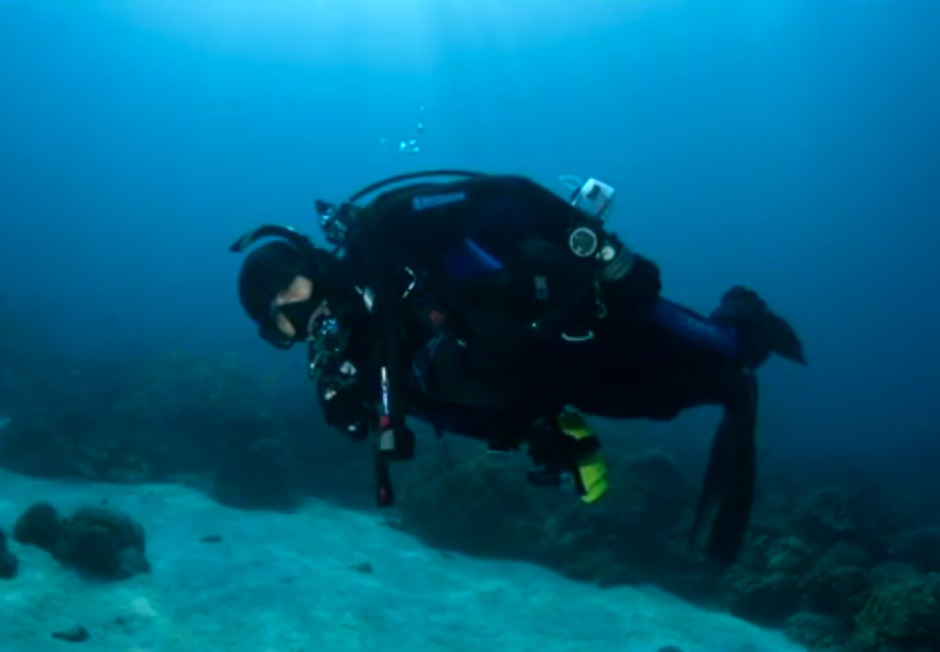 Ocean Safari-Cocos Is., Costa Rica Dive Expedition 2013 (Mar 22 - April 2 2013)